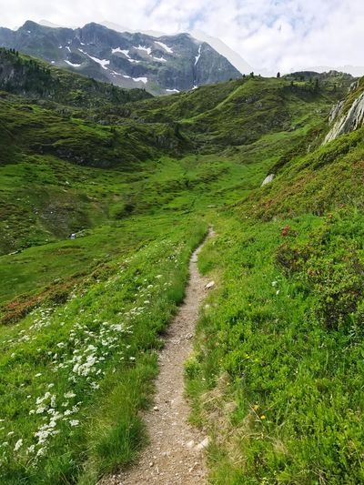 Hiking Trail Path Mountain Beauty In Nature Nature Scenics Green Color Tranquil Scene Landscape Tranquility Outdoors Grass The Way Forward Mountain Range No People