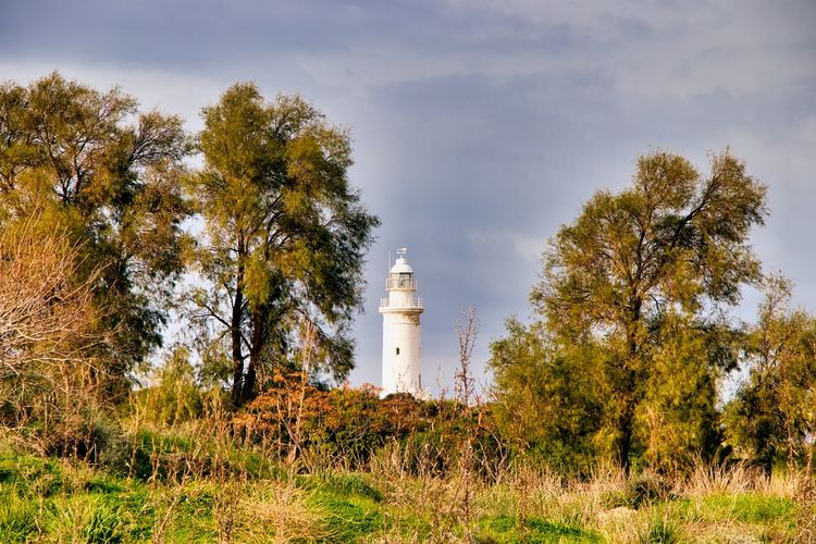 Trees and lighthouse on field against sky