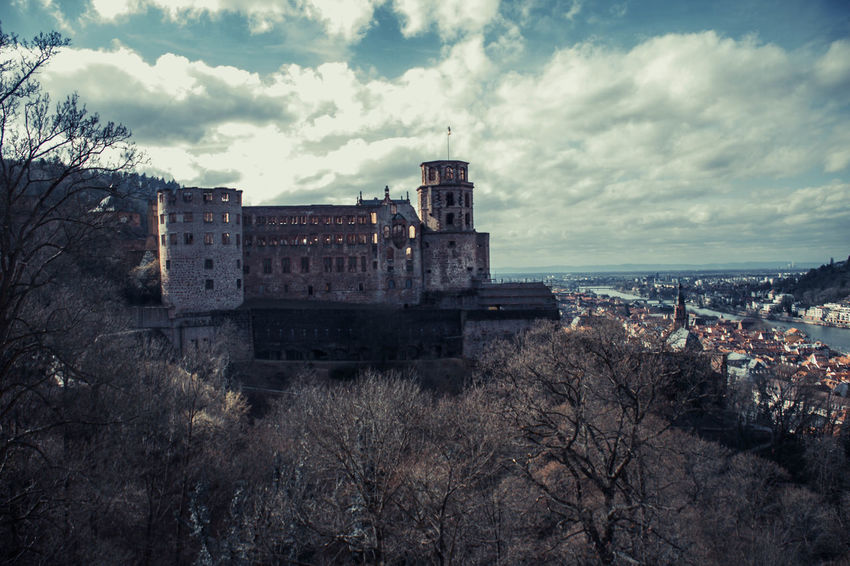 Heidelberg Castle Home Love Nature Quality Time Architecture Bare Tree Building Exterior Built Structure Castle Cloud - Sky Day History Nature No People Old Old Ruin Outdoors Sky Travel Destinations Tree