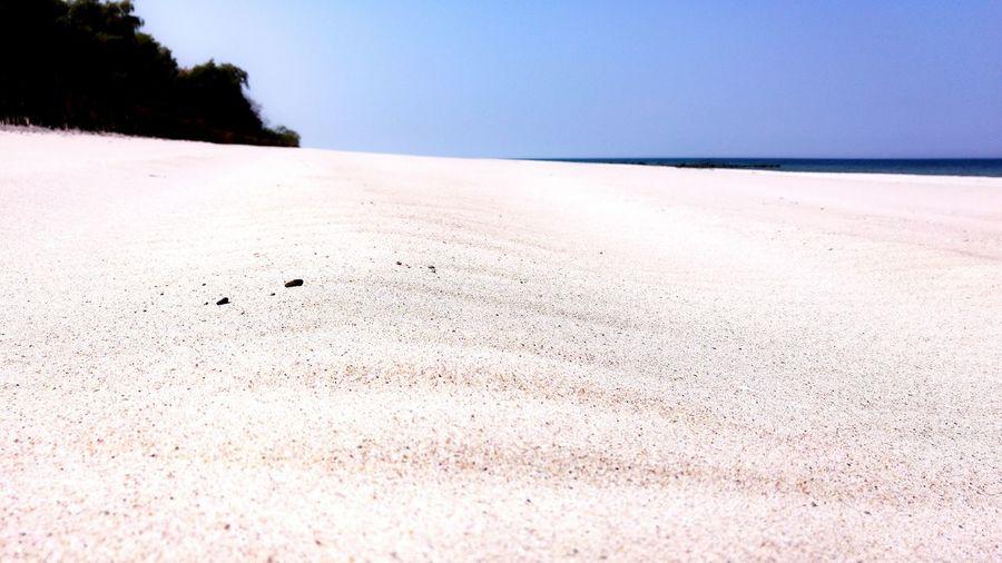 Scenic view of sandy beach