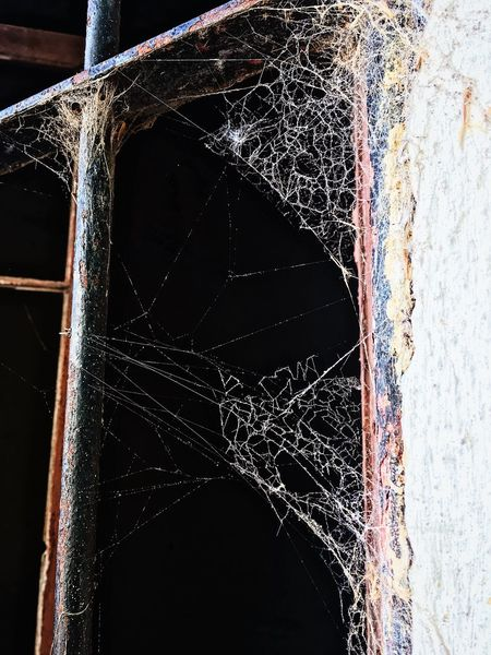 A spiderweb in the window Nature On Your Doorstep Old Buildings IPhoneography No People Water Indoors  Close-up Nature Motion Day Architecture Sunlight Creativity Built Structure