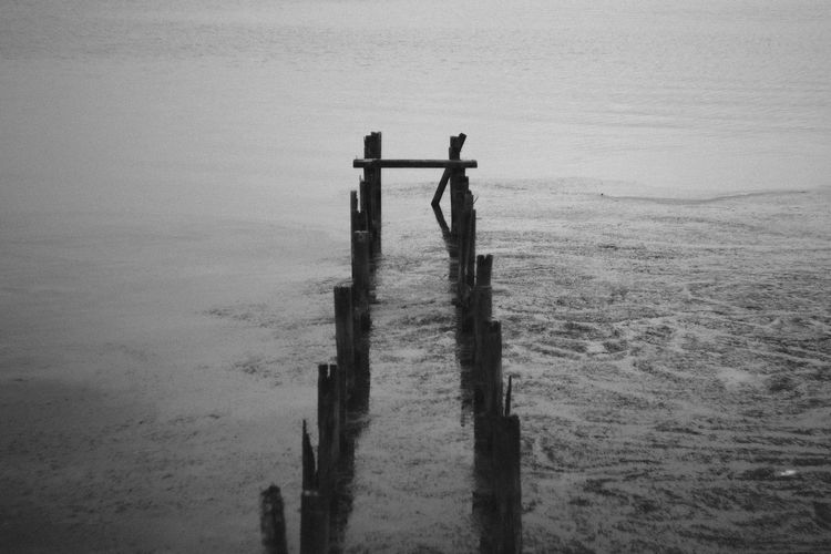 Wooden posts on sea against sky