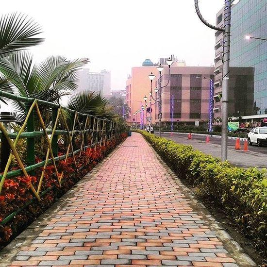 Street Streetview_walking Beautifulview Foggy KolkataStreets Just Taking Pictures Kolkatadiaries