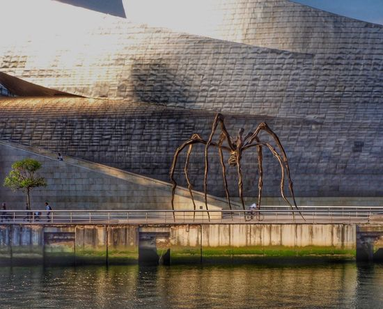 Guggenheim Bilbao Museoa. Architecture Water Day Modern City River City Travel Destinations Architecture Color Photography Colors Tree Museum Of Art Museum Of Modern Art Museum Modern