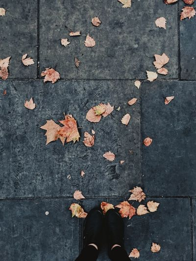 Autumn Leaf Change Dry Leaves Low Section Human Leg Fallen Outdoors Human Body Part Day Street Standing Shoe One Person Nature Close-up Maple Leaf Real People Maple smell of autumn The Week On EyeEm