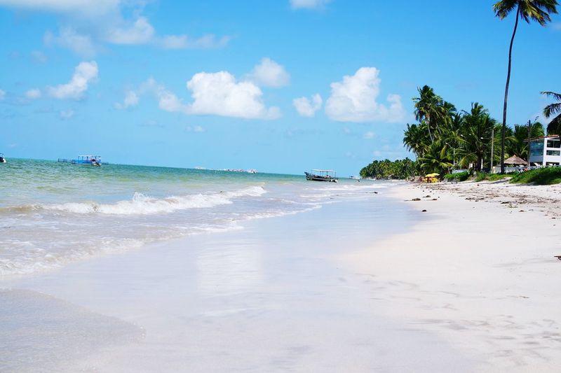 Brazil Roadtrip Beach Sunny Picoftheday Traveling Lights Maragogi