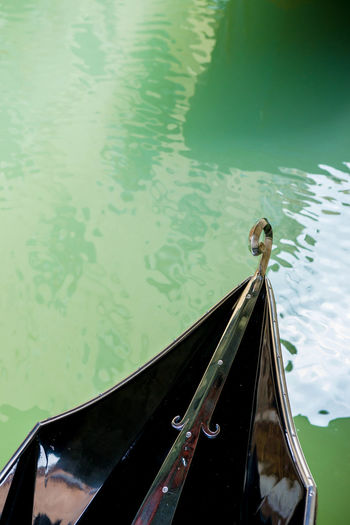 Animal Themes Animal Wildlife Animals In The Wild Bird Close-up Day Gondola - Traditional Boat High Angle View Mode Of Transport Nature Nautical Vessel No People One Animal Outdoors Stylographic Transportation Water