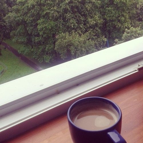 Coffe Kawa W Deszczowy dzien raining day view tree