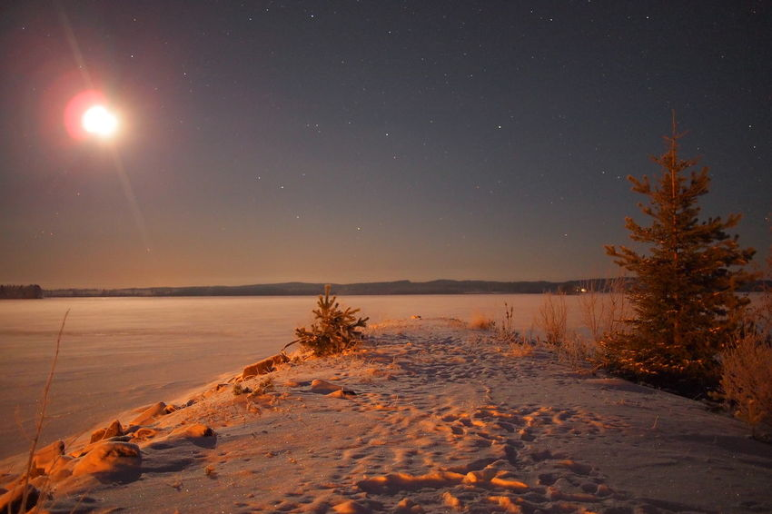 Astronomy Beauty In Nature Cold Temperature Galaxy Nature Night No People Outdoors Scenics Sky Snow Star - Space Tranquil Scene Tranquility Tree Water Winter