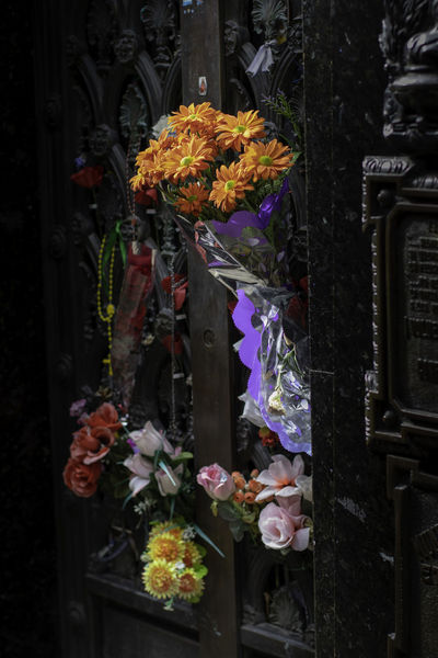 La Recoleta Cemetery, Buenos Aires, Argentina Upper class death in Argentina. The myriad of tombs and mausaleums open to the public housing the wealthy and famous of Argentine society. A macabre place of death and celebration. The Photojournalist - 2018 EyeEm Awards Arrangement Beauty In Nature Bouquet Choice Close-up Day Decoration Flower Flower Arrangement Flower Head Flowering Plant Fragility Freshness Multi Colored Nature No People Outdoors Plant Retail  Retail Display Variation Vulnerability