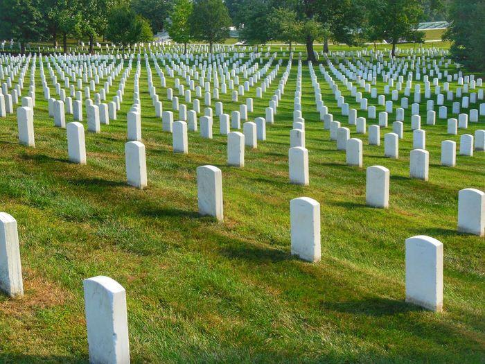Row of tombstones in cemetery