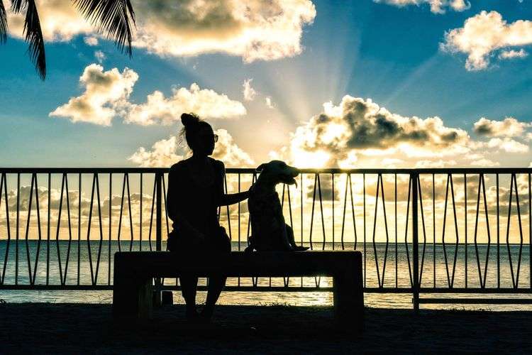 Silhouette woman with dog sitting by railing against sea during sunset
