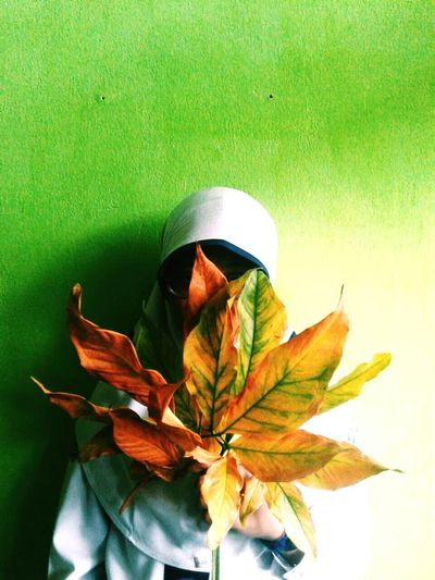 Don't let your beautiful hide Leaf Breaktime Hello World VSCO Creative