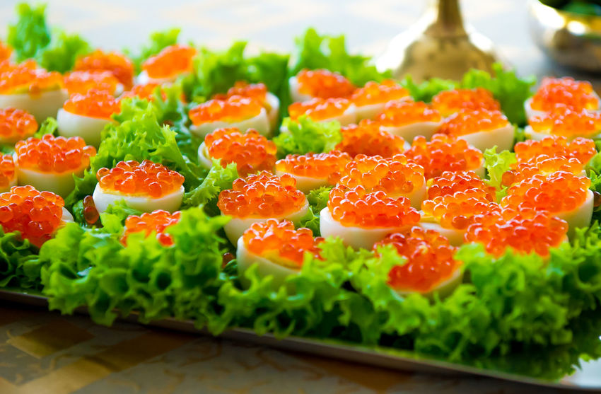 Stuffed eggs with red caviar Cuisine Seafood Snack Stuffed Appetizer Appetizers Appetizing  Boiled Eggs Canapes Caviar Close-up Eggs Filled Eggs Food Healthy Eating Indoors  Lettuce No People Ready-to-eat Red Caviar Stuffed Eggs Vegetable