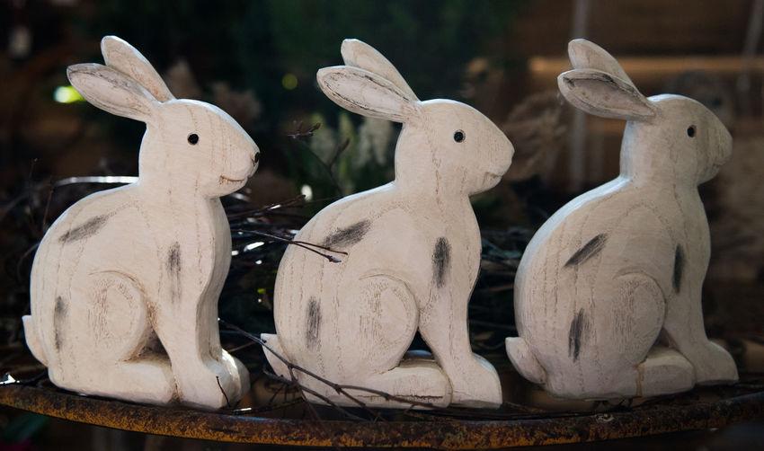 Close Up Close-up Dekoration Easter Easter 2017 Easter Bunnies  Easter Bunny Easter Decoration Osterdeko Osterdekoration Osterhase Osterhasen Ostern Ostern 2017