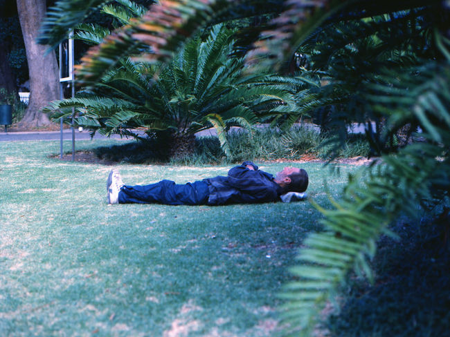 TheWeekOnEyeEM Adult Casual Clothing Day Full Length Government Grass Growth Lying Down Lying On Back Men Nature Outdoors People Plant Relaxation Selective Focus Side View Sleeping Social Issues Tree