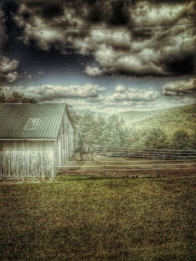Hdr Edit .. Barnlife . Landscape_Collection