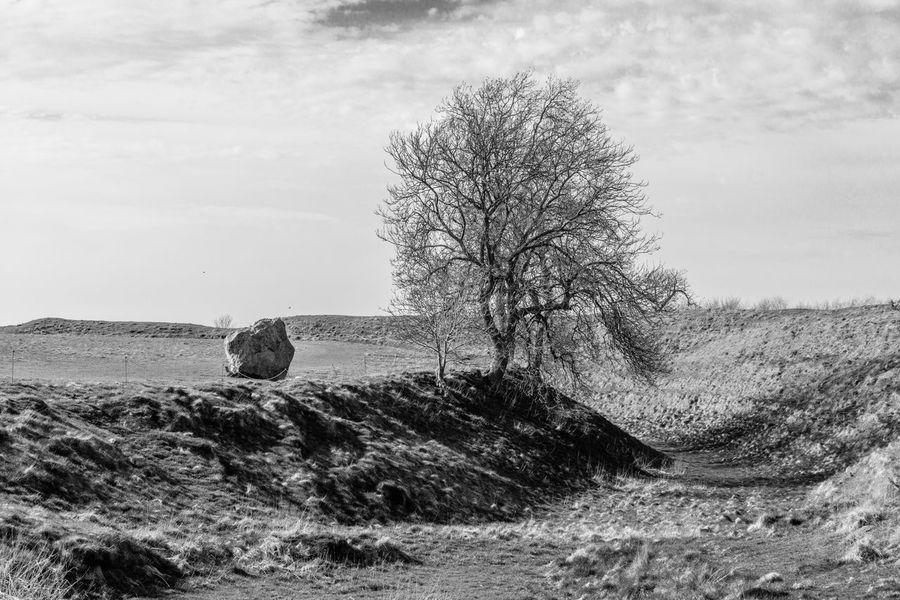 Avebury Monochrome Blackandwhite England Traveling