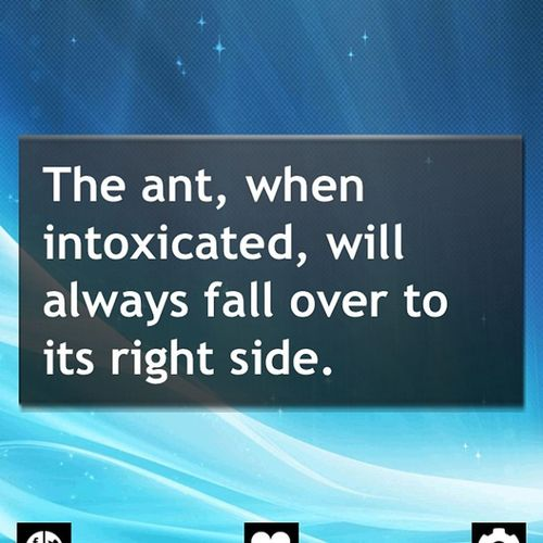 Didn't know ants got intoxicated. WTF Really Hahaha