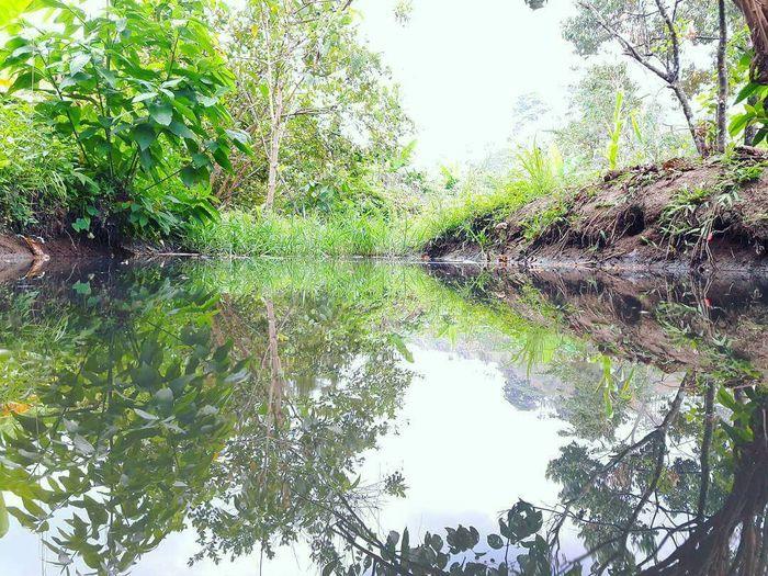 Manabi Ecuador All You Need Is Ecuador First Eyeem Photo Water Reflection Nature Beauty In Nature Lake