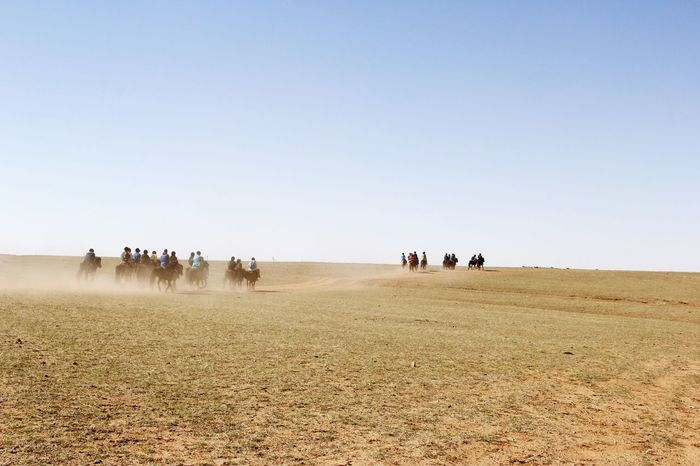 Nature Outdoors Clear Sky Landscape Grassland Vacations Horse