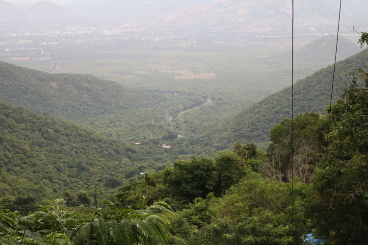 a high view from a pilgrim place....tirupati Aerial View Beauty In Nature Growth High Angle View Landscape Mountain Mountain Range Non-urban Scene Outdoors RBK Remote Scenics Tourism Tranquil Scene Tree Water