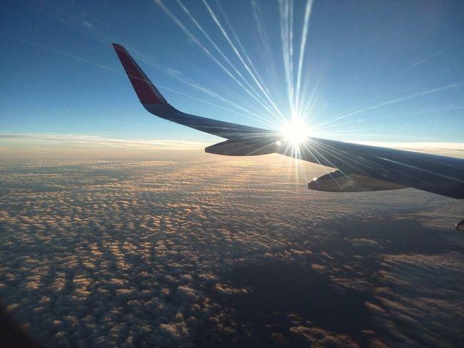 Sunlight Wing Aircraft Lens Flare Sky Cloud - Sky Flying Aircraft Flight ✈ Sunset Sun First Eyeem Photo