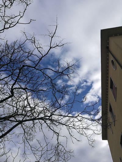 Cloud - Sky Frame Building Exterior Nostalgic  Wintertime Windows Lonliest Place