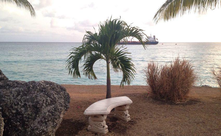 IPSNoFilter Barbados Beach Photography Nature