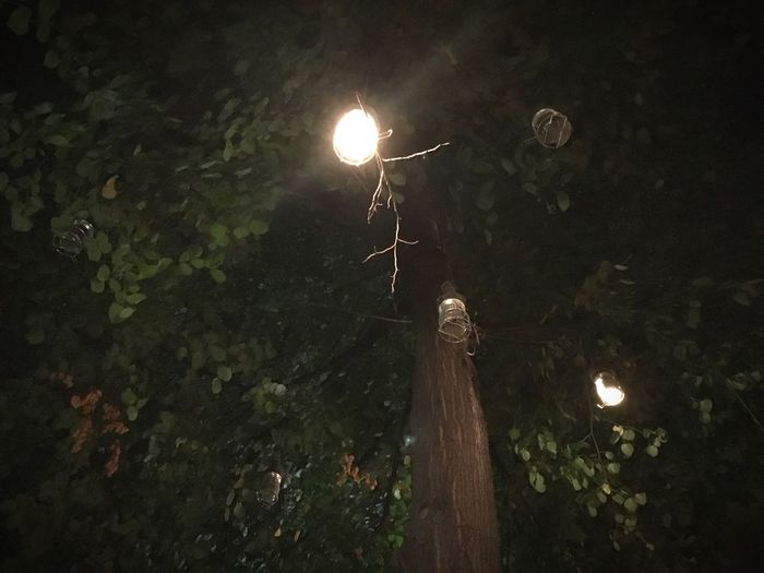 Low angle view of illuminated street light