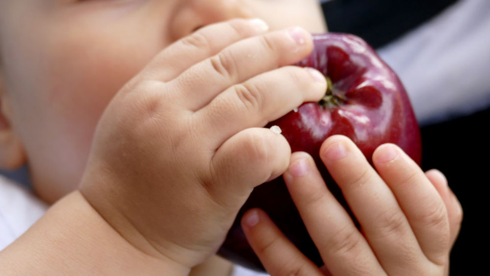 Apple Apple With Kid Baby Childhood Close-up Day Food Food And Drink Fragility Freshness Fruit Hand Healthy Eating Holding Human Body Part Human Hand Indoors  Kid Hand  One Person People Real People
