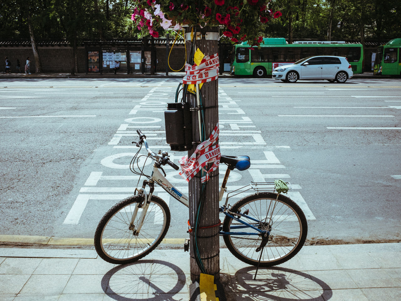 bicycle, transportation, mode of transport, land vehicle, stationary, street, parking, outdoors, day, car, city, road, tree, bicycle rack, no people