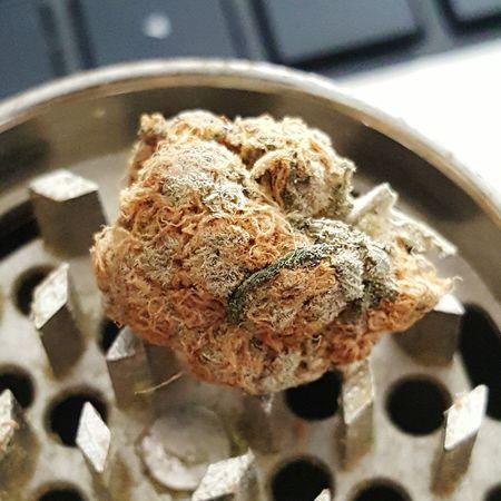 Marijuana Weed 420 420life