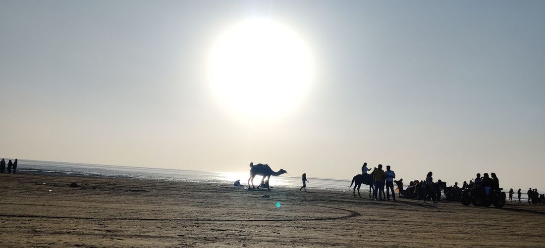 People riding horses on beach against clear sky