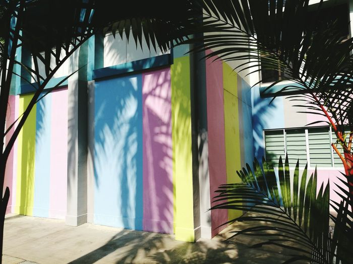 Summer colors Multi Colored No People Outdoors Tree Day Building Exterior Architecture Built Structure Simplicity Minimal Summer Colors Summer Summer Vibes Shadows On The Wall Shadows And Sunlight Shadows Palm Trees Framed Pastel Colors Pastel Power Leaves Green Shades Blue Pink Yellow Stripes Straight Lines Summer Road Tripping