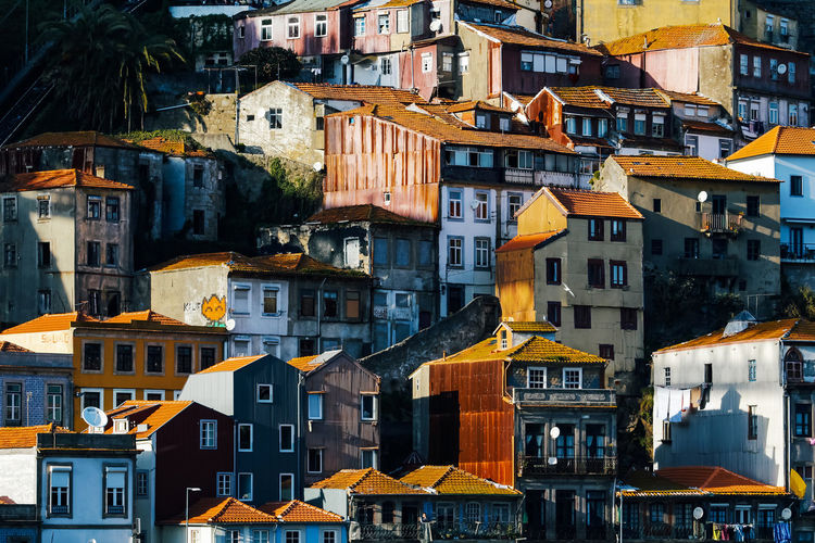 Building Exterior Architecture Built Structure Building Residential District City Crowd House Crowded Day Town Roof Outdoors Community Window High Angle View Nature Human Settlement Multi Colored TOWNSCAPE Apartment Row House Settlement My Best Photo