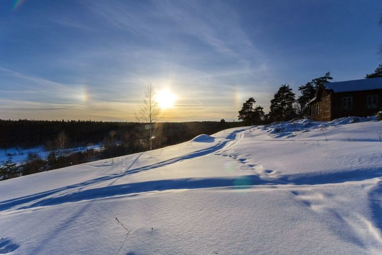 Sun halo effect. Гало - эффект от солнца на морозе Sky Clouds Sun Halo Radiance Light Halo Effect Reflection Refraction Nature Nature_collection Landscape No People Non Urban Scene Tree Snow Cold Temperature Winter Sunset Beauty Forest Rural Scene Sunlight Frozen Pine Tree Pine Woodland Pine Wood Frost Deep Snow Weather Condition