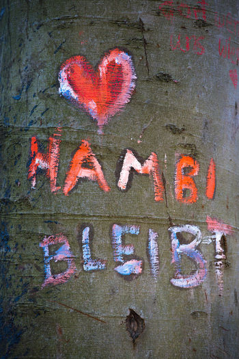 Text Communication Western Script No People Graffiti Creativity Heart Shape Art And Craft Close-up Wall Love Wall - Building Feature Day Positive Emotion Architecture Emotion Capital Letter Sign Paint Outdoors Message Tree Trunk Hambibleibt Hambi Hambacher Forst