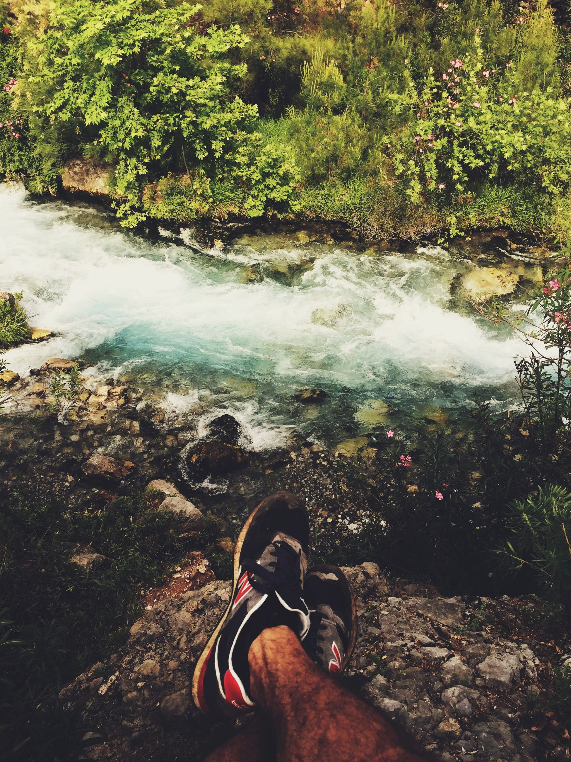 low section, person, personal perspective, shoe, water, lifestyles, leisure activity, human foot, standing, men, footwear, tree, unrecognizable person, forest, nature, part of, outdoors