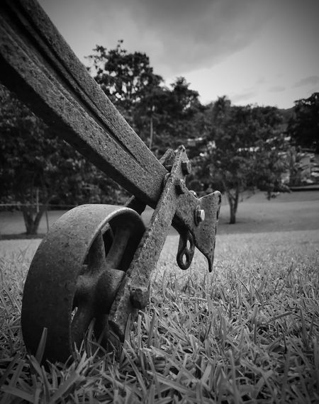 Iron Wheels Old Wheel Old Plow Old Plowing Machine Plowing Machine Wheel Black And White Photography Black And White Black And White Collection  No People Low Angle View Rosty Steel Point Of View Monochrome Monochrome Photography
