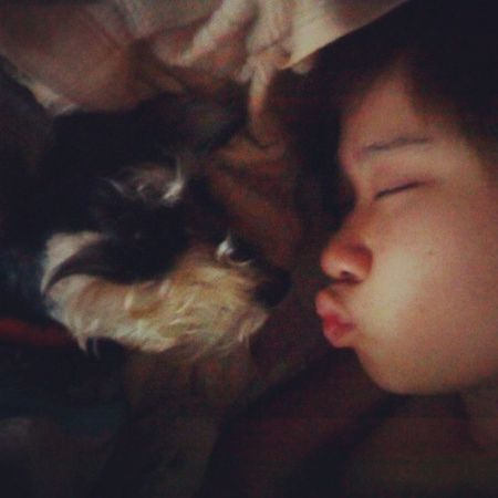 Me n my darling..Minischnauzer Dog Canine Pet kissmorninggirlfacewakeupsleepy