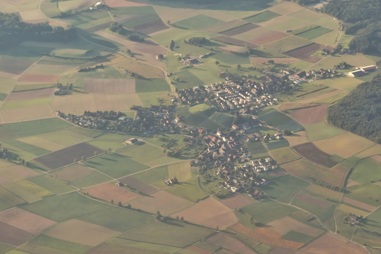 agriculture, patchwork landscape, aerial view, farm, landscape, field, beauty in nature, rural scene, cultivated land, scenics, nature, tranquil scene, tranquility, house, cultivated, tree, growth, day, outdoors, no people, plowed field, rice paddy, hot air balloon