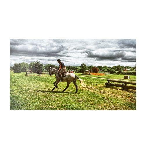 Taking Photos Enjoying Life Horse Horseriding Horse Riding Iphone6plus The Week Of Eyeem IPhoneography