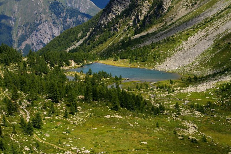 Summer view of Arpy lake in Valle d'Aosta, Italy Holidays Landscape_Collection Morgex Nature Panoramic Trekking Alps Arpy Arpy Lake Beauty In Nature Environment Europe Green Color Italian Alps Italy Lake Landscape Mountain Mountain Peak Pine Tree Scenics - Nature Vacation Water Wilderness WoodLand