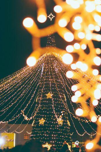 Xmas Oradea Romania Christmas Illuminated Decoration Christmas Decoration Celebration Christmas Lights Holiday Night christmas tree Lighting Equipment Tree Christmas Ornament No People Celebration Event Defocused Light Capture Tomorrow