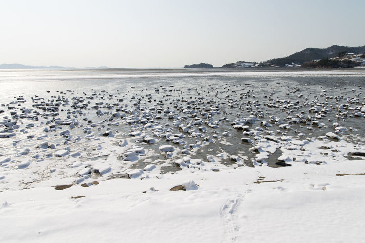 winter scenery at the seaside of Jeungdo Island in Sinan, Jeonnam, South Korea Colors Frozen Ice Jeungdo Snow ❄ Winter Winter Landscape Animal Themes Beach Beauty In Nature Cold Cold Temperature Day Frozen Mud Flat Frozen Seaside Landscape Mountain Mud Flat Nature No People Outdoors Scenics Sea Seaside Sinan Sky Snow Tranquil Scene Tranquility Water Winter Winter Land