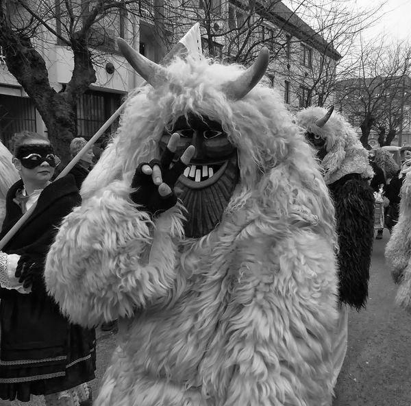 Carnival Costume Busó Festival Mohács Hungary