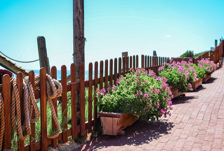 Made for sunny days. Summer Planter Box Planter Pot Flowers Blue Sky Clear Blue Sky Clear Sky Fence Footpath Pavement Fence Plants Plants And Flowers Purple Flowers Fence Sea Ocean Ocean View Violet Flowers Sunny Day Sunny Fair Weather Wooden Fence Linear Perspective Diminishing Perspective