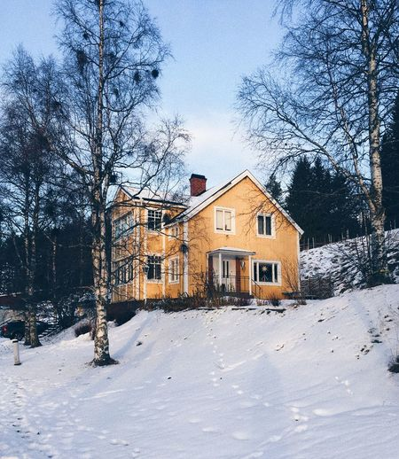 Got this shot in a sunny morning Yellow Moody House Houses Sweden Architecture Building Exterior Snow Built Structure Cold Temperature Winter Building House Nature Day Tree Covering No People Sky Plant Outdoors Land Snowing First Eyeem Photo