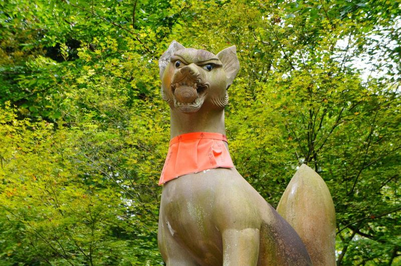 Guard Fox Sculpture Shrine Religion Mitology Statue Sculpture Nature Animal Themes Sanctuary  Spirituality